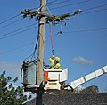 Country Energy linesmen closing the circuit.jpg