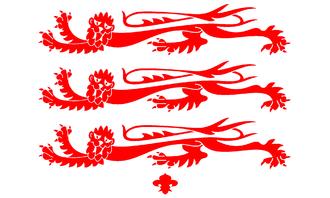 Flag of Dorset - Dorset County Council Armorial Banner