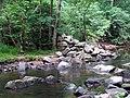 Crabtree Creek Mill Trail Umstead SP 3346 (5893914719) (2).jpg
