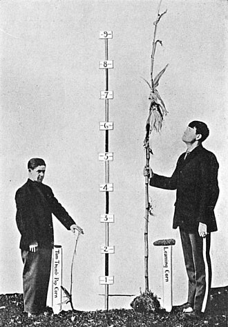Heritability - Studies of heritability ask questions such as how much genetic factors play a role in differences in height between people. This is not the same as asking how much genetic factors influence height in any one person.