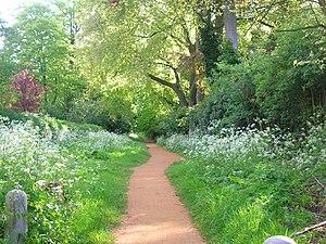 Headington Road - Cuckoo Lane, near Headington Road.