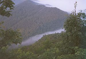 Cumberland Gap National Historical Park - Fog forming over the gap.