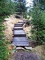 Dřevěné schody od Jizerky ke žluté značce.jpg