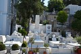 DSC-0035-orthodox-clergy-tombs-athens-august-2017.jpg