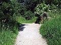 Dales Way footpath - geograph.org.uk - 1389920.jpg
