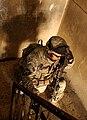 Defense.gov photo essay 070214-A-4520N-437.jpg