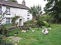 Dent Head Farm - geograph.org.uk - 226346.jpg
