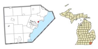 Detroit Beach, Michigan Census-designated place & unincorporated community in Michigan, United States