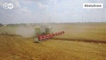 Datei:Deutsche Welle - Daily Drone - Getreideernte.webm
