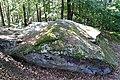 Diabelski Kamień Odargowo.jpg