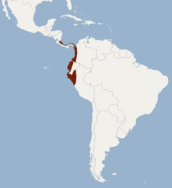 Distribution of Sturnira luisi.png