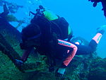 Diver on Cheynes III wreck at Michaelmas Island, Western Australia PC259812.JPG