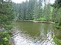 Dobryanskiy r-n, Permskiy kray, Russia - panoramio (215).jpg
