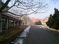Dongying, Shandong, China - panoramio (315).jpg