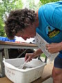 Donna Holcombe looking for macroinvertebrate stream animals (4948263820).jpg