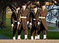 Drottningholms slott slottsvakten 2012.jpg