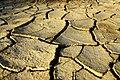 Dry land - panoramio.jpg