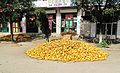 Drying corn on the road (6243111595).jpg