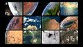 ESTCube-1 orbiting our colourful planet.jpg
