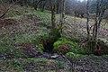 Easterpark Well, Aberfoyle - geograph.org.uk - 435739.jpg