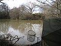 Eddison Pond - geograph.org.uk - 1750094.jpg