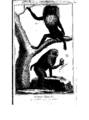 Encyclopedie volume 5-044.png