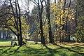 Englischer Garten Herbst-43.jpg