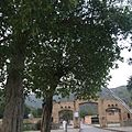 Enterance at Saidpur Village, Islamabad.jpg