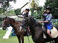 Equestrian Scout - Sri Lanka.jpg