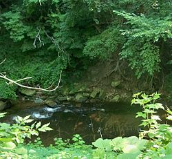 Euclid Creek as it flows through the Cleveland Metroparks reservation, part of which was once the site of South Euclid's bluestone quarries.