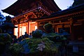 Exterior of Kasuga-taisha at night. Nara, Nara Prefecture, Kansai Region, Japan-2.jpg