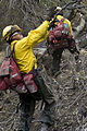 FEMA - 33483 - BARE team members in California.jpg