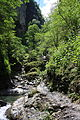 FR64 Gorges de Kakouetta27.JPG