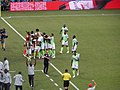 FWC 2018 - Group D - NGA v ISL - Photo 20.jpg