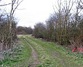 Farm Track - geograph.org.uk - 730352.jpg