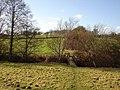 Farmland Nr Warbleton East Sussex - geograph.org.uk - 129657.jpg