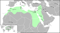 Fatimid Islamic Caliphate He.png