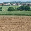 Felder bei Eisenberg - panoramio (1).jpg