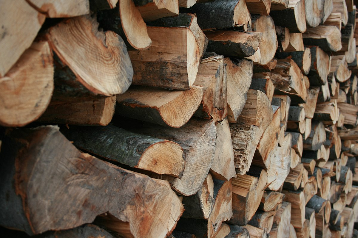 Wood Storage Firewood