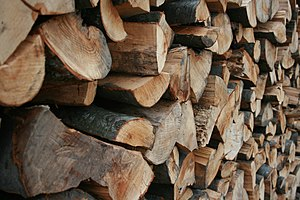 English: Firewood stacked up to promote drying.