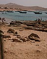 Fishing men and boats in Mubarak Goth where they live on the coast of Pakistan.jpg