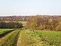 Fitz-James (Oise) - Fond de Béronne et Bois de la Frête.JPG