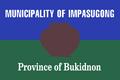 Flag of Impasugong, Bukidnon (variant).png