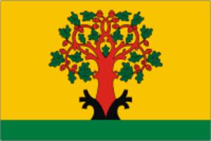Tsivilsk - Image: Flag of Tsivilsk (Chuvashia)