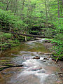 Flickr - Nicholas T - Kitchen Creek (3).jpg