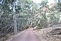 Flinders Ranges SA 5434, Australia - panoramio (73).jpg