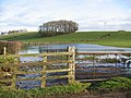 Flooded field - geograph.org.uk - 323793.jpg