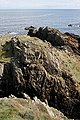 Folded Rocks - geograph.org.uk - 223959.jpg