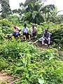 Food crop production team.jpg