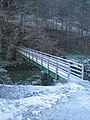 Footbridge at Blaen-y-Ddol - geograph.org.uk - 1083836.jpg